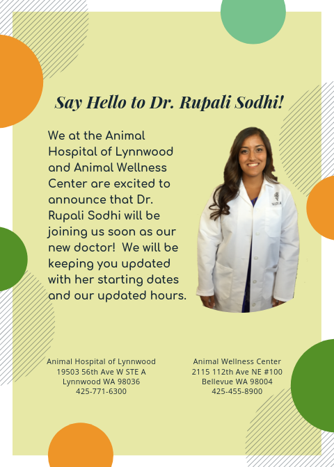 Say Hello to Dr. Rupali Sodhi